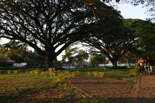 Parque Lineal Rio Grande - Caloto