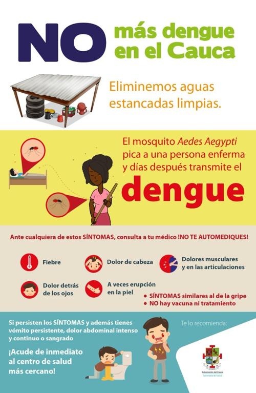 No más Dengue en el Cauca - Secretaría de Salud Departamental